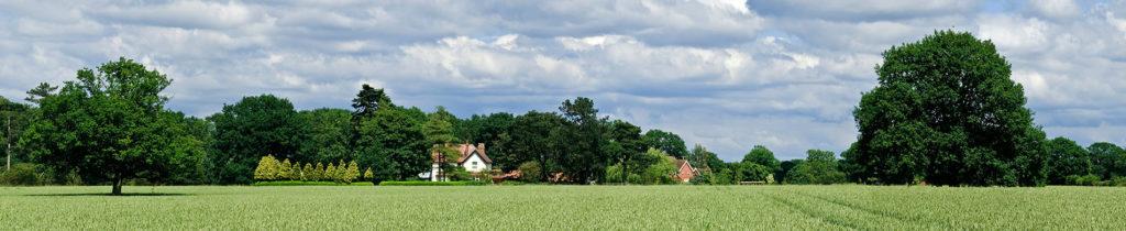 Veka Green Landscape